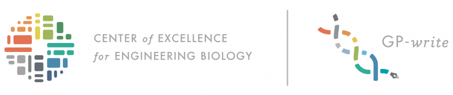 Center of Excellence for Engineering Biology | GP-write